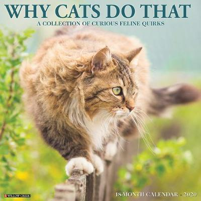 Why Cats Do That 2020 Wall Calendar by Willow Creek Press