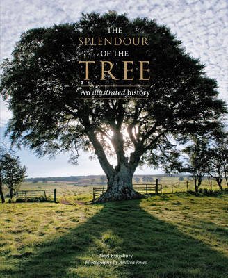 The Splendour of the Tree by Noel Kingsbury