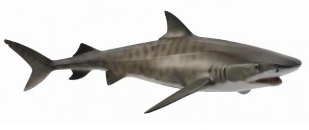CollectA - Tiger Shark