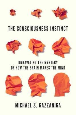 The Consciousness Instinct by Michael S Gazzaniga image