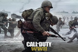 Call Of Duty World War 2: Stronghold - Maxi Poster (664)