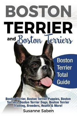 Boston Terrier and Boston Terriers by Susanne Saben