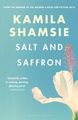 Salt and Saffron by Kamila Shamsie image