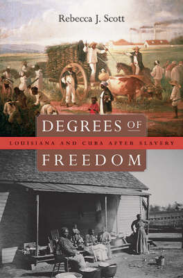 Degrees of Freedom: Louisiana and Cuba After Slavery by Rebecca J. Scott