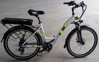 Ebenz Torino Electric Bike
