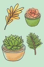 Succulents by Molly Elodie Rose