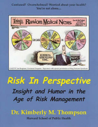 Risk in Perspective by Kimberly M. Thompson image