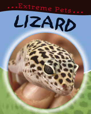 Lizard by Deborah Chancellor image