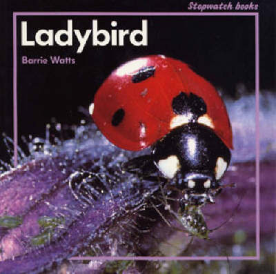 Ladybird by Barrie Watts image