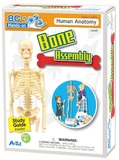 Artec Hands-on Lab - Bone Assembly