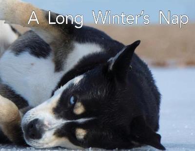 A Long Winter's Nap by Todd Bushman image