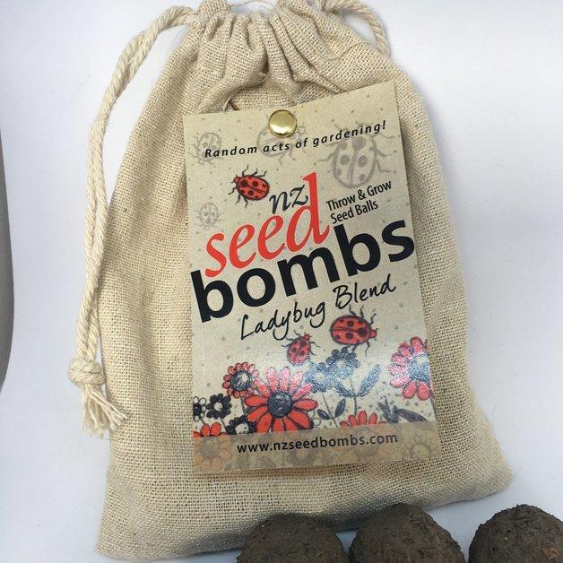 NZ Seed Bombs - Ladybugs