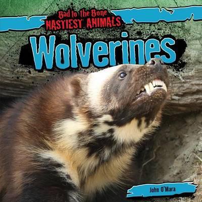 Wolverines by John O'Mara image