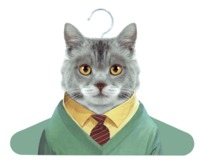 Annabel Trends: Zoo Portrait Hanger - Cat