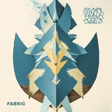 Fabric (2LP) by The Black Seeds