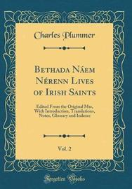 Bethada N�em N�renn Lives of Irish Saints, Vol. 2 by Charles Plummer image