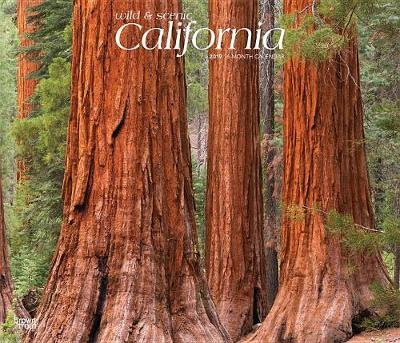 California Wild & Scenic 2019 Deluxe by Inc Browntrout Publishers