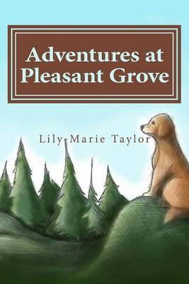 Adventures at Pleasant Grove by Lily-Marie Taylor
