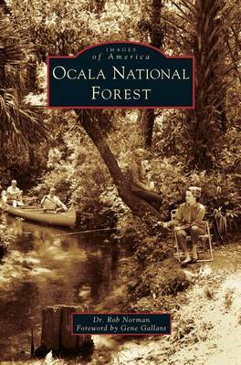 Ocala National Forest by Rob Norman