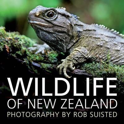 Wildlife of New Zealand image