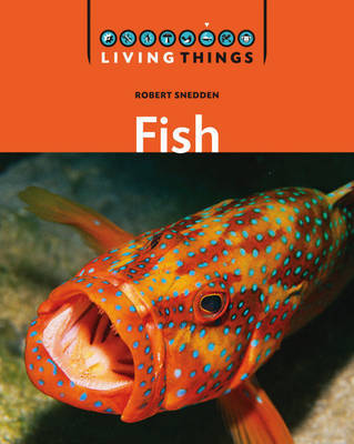 Fish by Robert Snedden