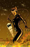 Catwoman Volume 3: Under Pressure TP by Ed Brubaker