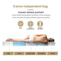 Fraser Country: Superior 5 Zones Pocket Spring Mattress - Queen