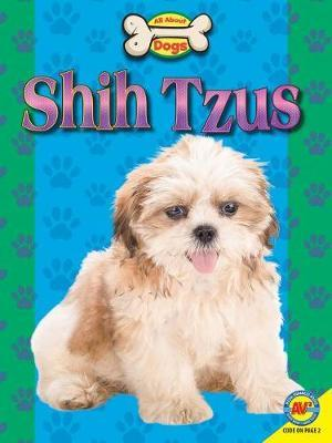 Shih Tzus by Susan Heinrichs Gray image