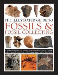 Fossils & Fossil Collecting, The Illustrated Guide to by Steve Parker