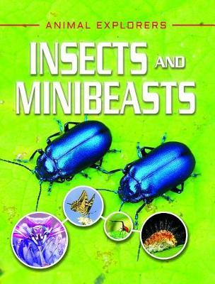 Insects and Minibeasts by Clare Hibbert image
