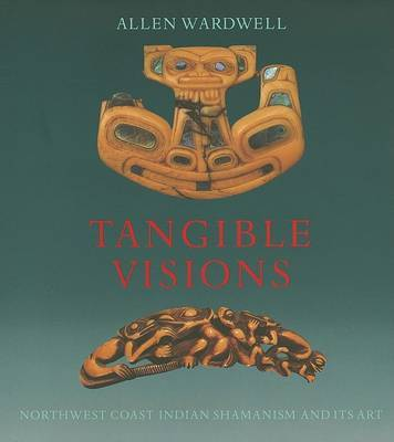 Tangible Visions by Allen Wardwell image