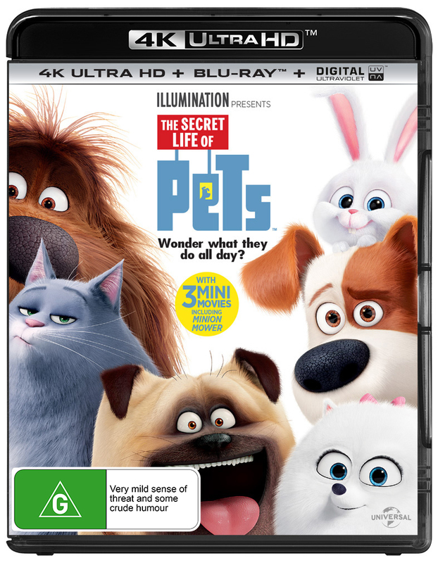 The Secret Life Of Pets on Blu-ray, UHD Blu-ray
