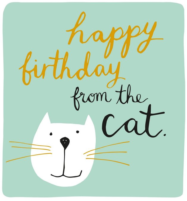 Caroline Gardner: Happy Birthday From The Cat - Greeting Card