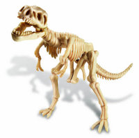 4M: Excavation Kits Tyrannosaurus Rex Skeleton