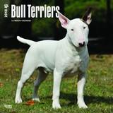 Bull Terriers 2018 Square Wall Calendar