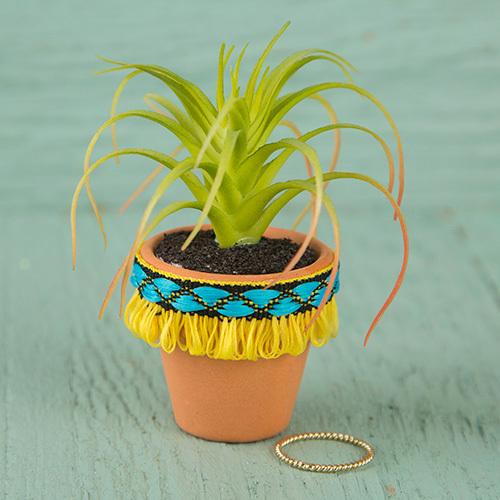 Natural Life: Succulent - Yellow Fringe