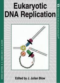 Eukaryotic DNA Replication image