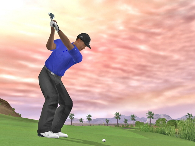Tiger Woods PGA Tour 07 for PS2 image