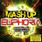 Mash Up Euphoria (3CD) by Various