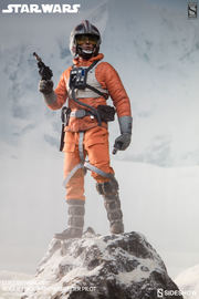 "Star Wars - 12"" Luke Skywalker (Rogue Group Snowspeeder Pilot) Figure"