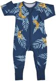 Bonds Zip Wondersuit Long Sleeve - Crouching Tiger (New Born)