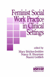 Feminist Social Work Practice in Clinical Settings image