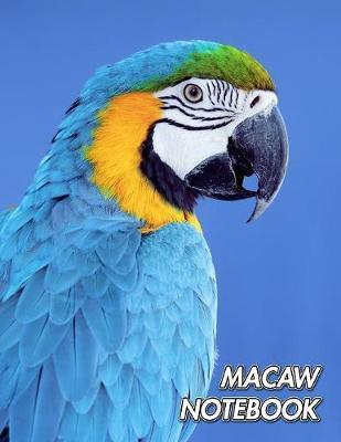 Macaw Notebook by Notebooks Journals Xlpress image