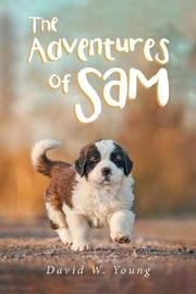 The Adventures of Sam by David W. Young