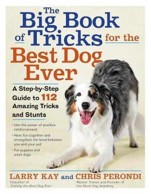 The Big Book of Tricks for the Best Dog Ever by Larry Kay image