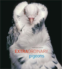 Extraordinary Pigeons by Stephen Green-Armytage image