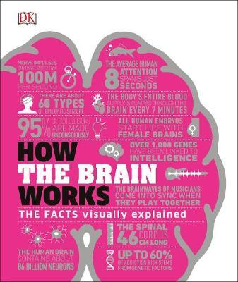 How the Brain Works by DK image