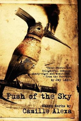 Push of the Sky by Camille Alexa image