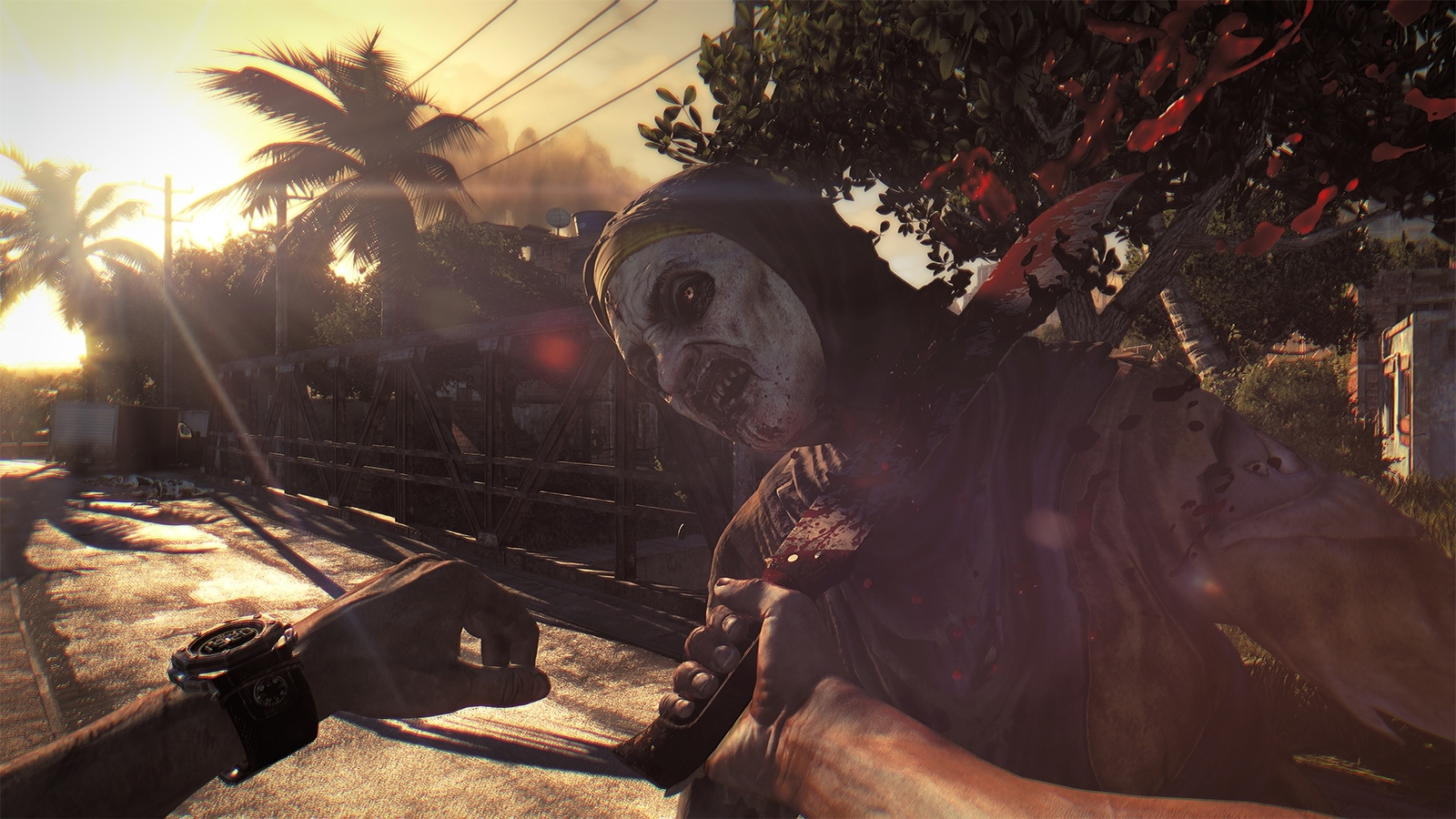 Dying Light: The Following – Enhanced Edition for PS4 image