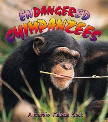 Endangered Chimpanzees by Bobbie Kalman image